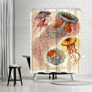 Adams Ale Haeckel Plate Single Shower Curtain
