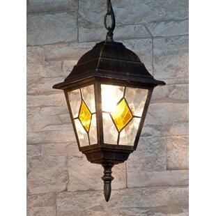 Albert 1-Light Outdoor Hanging Lantern Image