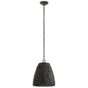 Durrant 1-Light Wicker Outdoor Pendant
