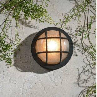 Williamsfield Outdoor Bulkhead Light by Breakwater Bay