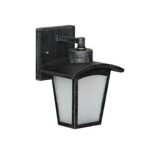 Leida 1-Light Outdoor Wall Lantern