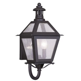 Darby Home Co Hart 2-Light Outdoor Sconce