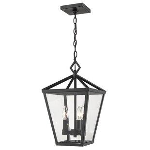 Gracie Oaks Adelaide 4-Light Outdoor Hanging Lantern