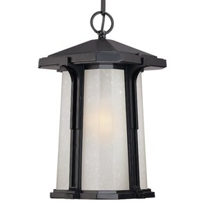 Darby Home Co Cowart 1-Light Outdoor Hanging Lantern