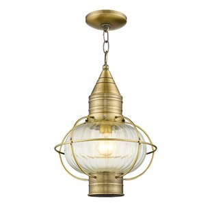 Look for Elmhurst 1-Light Outdoor Hanging Lantern By Breakwater Bay