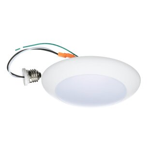 Winston Porter Glenna 1-Light Surface Mount Retrofit Flush Mount