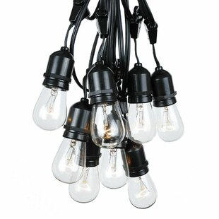 The Holiday Aisle Quill Patio 37.5 ft. Globe String Lights