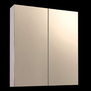 Kanye 24 x 24 Surface Mount Frameless Beveled Medicine Cabinet by Orren Ellis