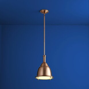 Berkowitz 1-Light Cone Pendant by Williston Forge