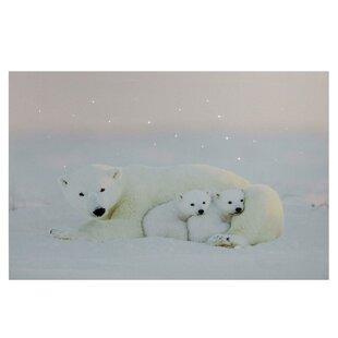 Superior U0027Mama Polar Bear And Cubsu0027 Fiber Optic Lighted Photographic Print On Canvas
