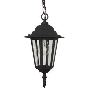 Best Oakhill 1-Light Outdoor Hanging Lantern By Charlton Home