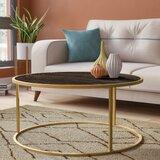https://secure.img1-fg.wfcdn.com/im/76411705/resize-h160-w160%5Ecompr-r85/7396/73961262/Delaune+Coffee+Table.jpg