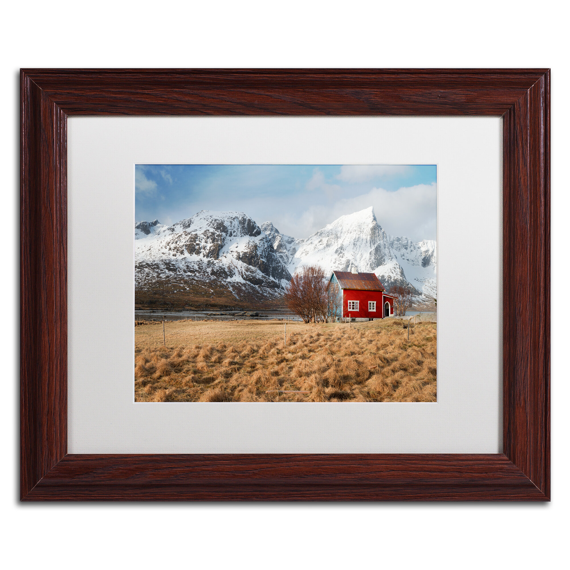 Trademark Art Believe It When You See It By Framed Photographic Print On Canvas Wayfair