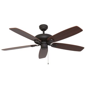 Indoor Ceiling Fans You\'ll Love