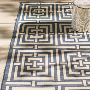 Mayer Blue/White Indoor/Outdoor Area Rug