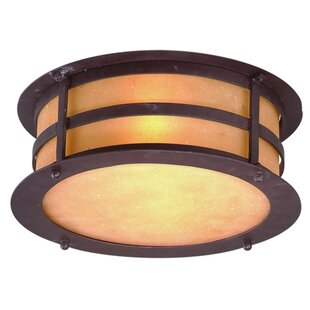 Darby Home Co Theodore 2-Light Flush Mount