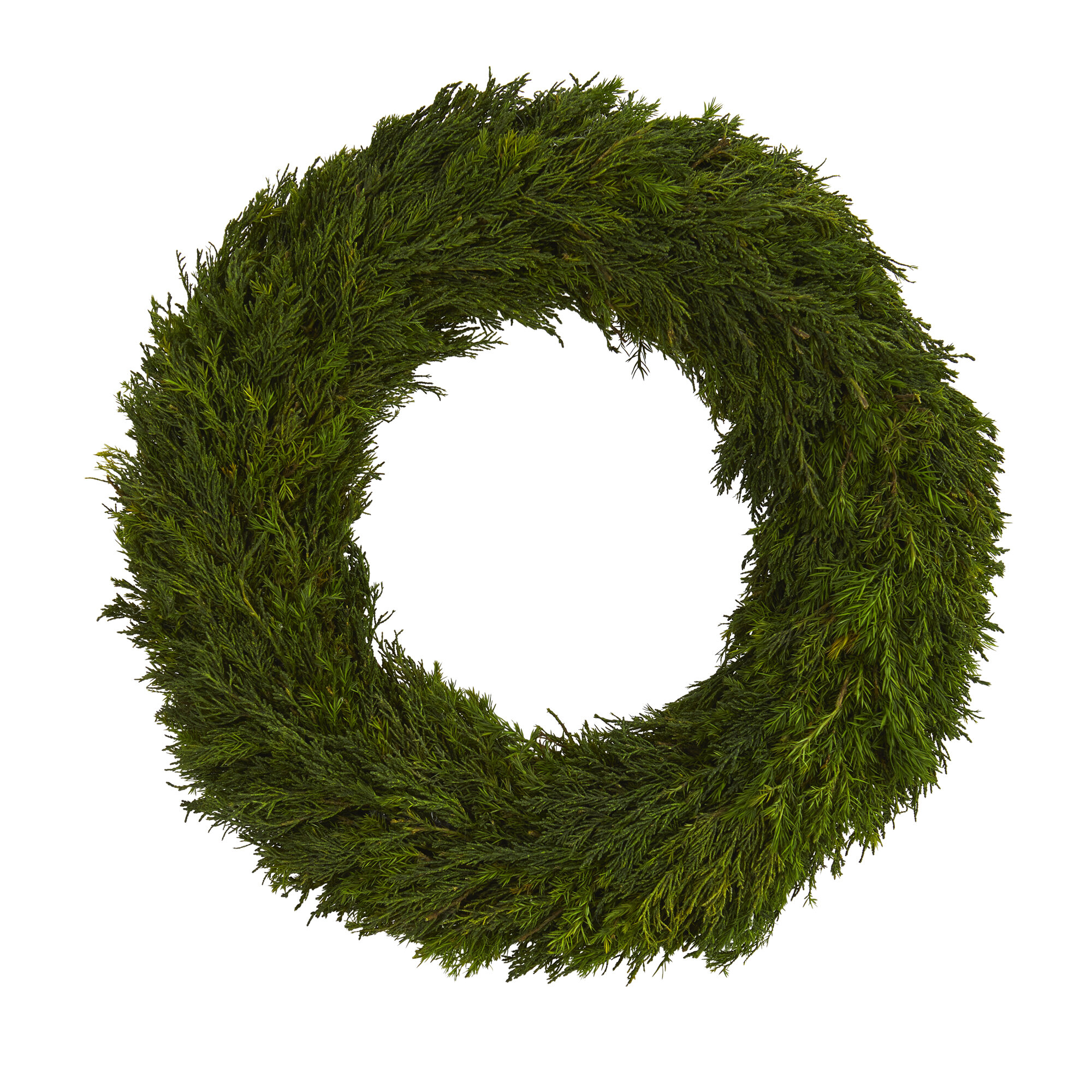 The Holiday Aisle Cypress Preserved 18 Polyester Wreath Wayfair