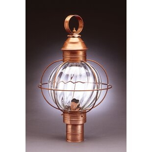 Gary Caged Round 1-Light Lantern Head by Longshore Tides