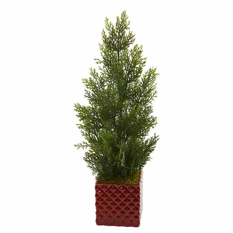 Charlton Home 20 Artificial Cedar Tree In Planter Wayfair