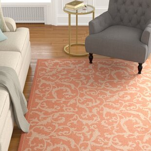 Octavius All Over Ivy Terracota Indoor/Outdoor Area Rug