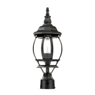 Reva Outdoor 1-Light Lantern Head