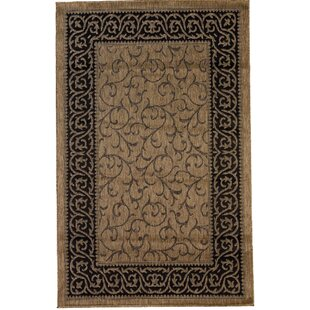 Dawley Brown Indoor/Outdoor Area Rug