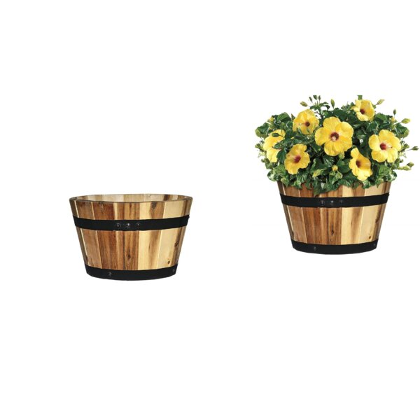 August Grove Rehkop 3 Piece Acacia Pot Planter Set Reviews