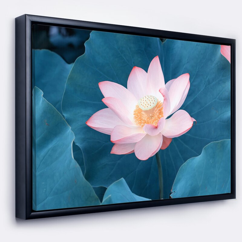East Urban Home \'\'Blooming Pink Lotus Flower\' Framed Graphic Art ...