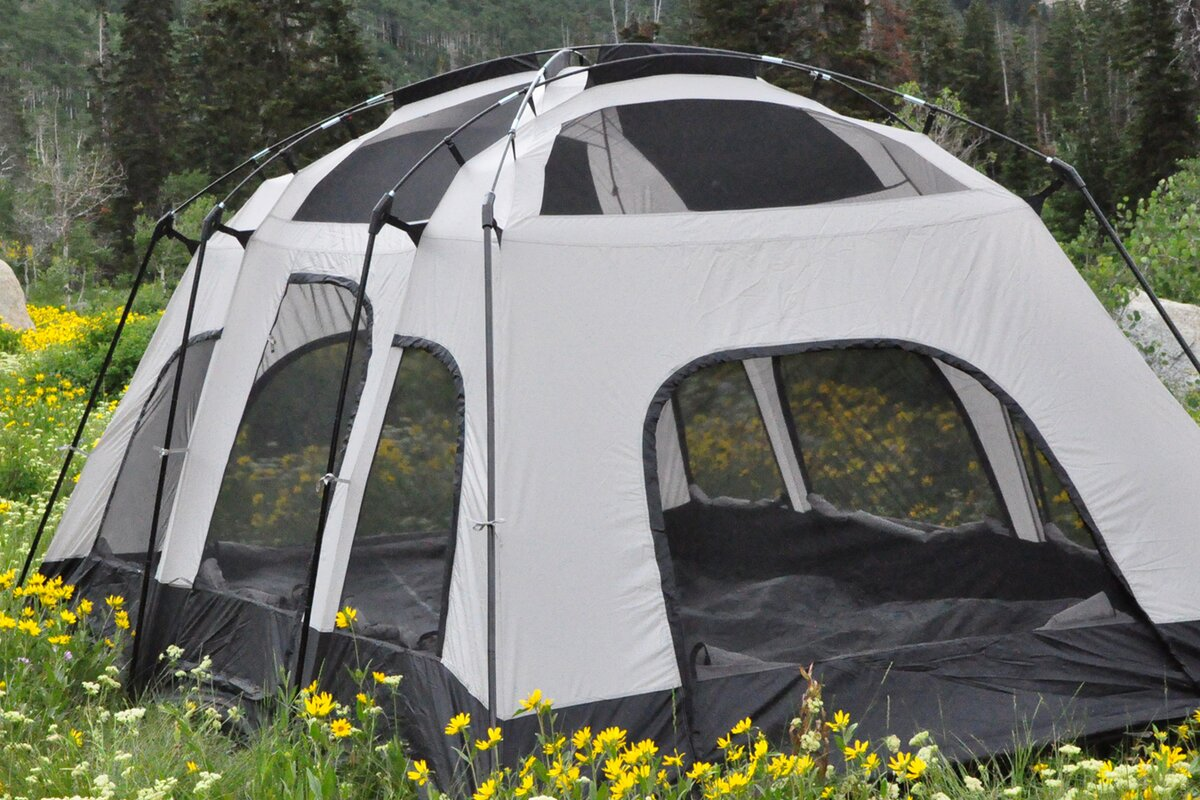 Fort Pine 10 Person Tent & Black Pine Fort Pine 10 Person Tent u0026 Reviews | Wayfair