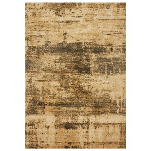 Spencerville Sandstone Rug by Charlton Home