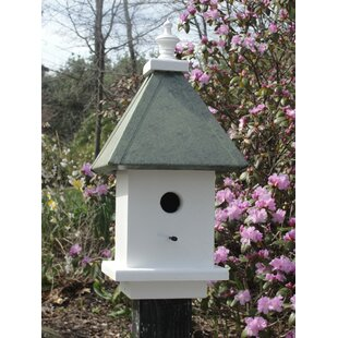 Wooden Expression Birdhouses Manor 20 in x 10 in x 10 in Birdhouse