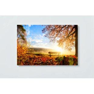 Sunrise Motif Magnetic Wall Mounted Cork Board By Ebern Designs