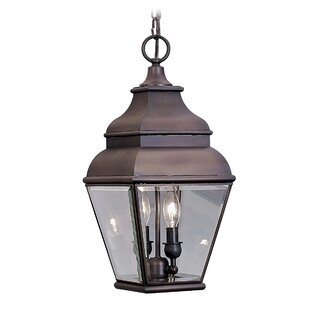 Darby Home Co Southport 2-Light Outdoor Hanging Lantern