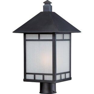 Bloomsbury Market Oralia Outdoor 1-Light Lantern Head