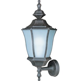 Darby Home Co Salesville 1-Light Outdoor Sconce