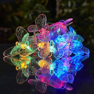 Crowl Novelty String Lights Image