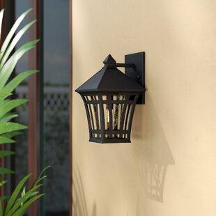 Bloomsbury Market Brette 1-Light Outdoor Wall Lantern