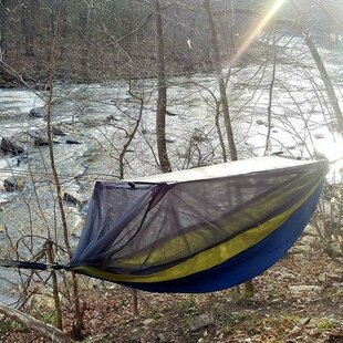 Freeport Park Lilly Camping Hammock