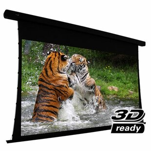 Bargain Electric Projection Screen By Elunevision