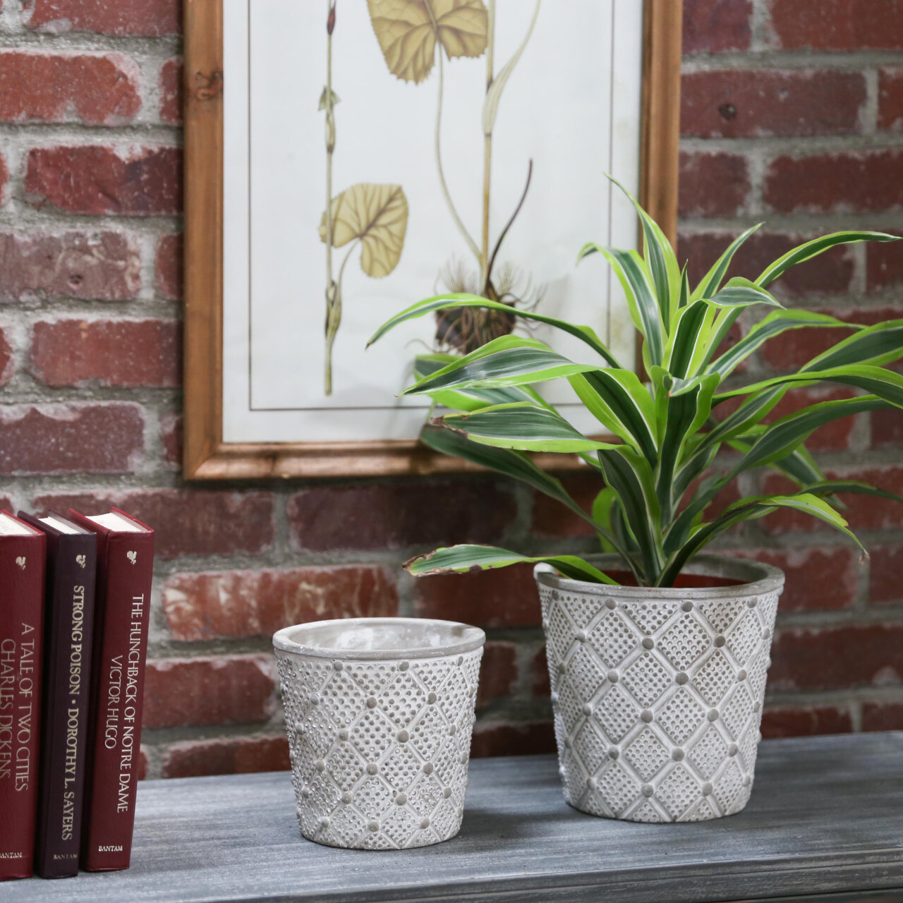 Ophelia Co Kewstoke 2 Piece Cement Pot Planter Set Wayfair