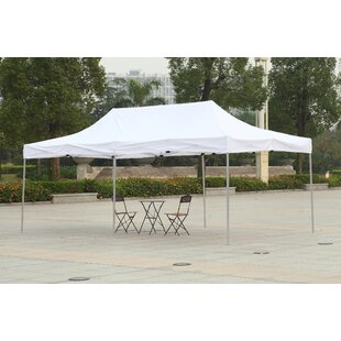 20 Ft. W x 10 Ft. D Steel Pop-Up Party Tent by American Phoenix