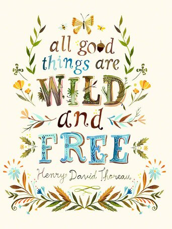 All Good Things are Wild and Free quote by Thoreau and art by Katie Daisy. Happy LOVE Day, Lovelies! Poetry, handlettered art, and colorful Valentine's Day finds await on Hello Lovely Studio!