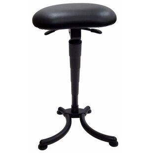 Sit-Stand Height Adjustable Lab Stool
