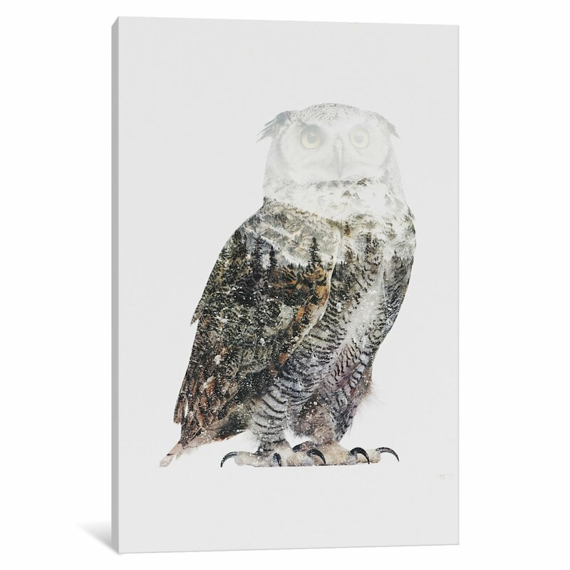 East Urban Home Arctic Owl By Andreas Lie Graphic Art On Wrapped Canvas Wayfair