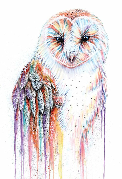 bungalow rose barred rainbow owl painting on wrapped canvas wayfair