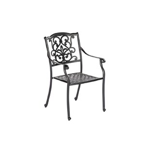 Colucci Garden Chair By Sol 72 Outdoor