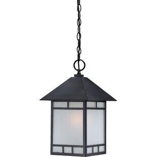 Bloomsbury Market Oralia 1-Light Outdoor Hanging Lantern