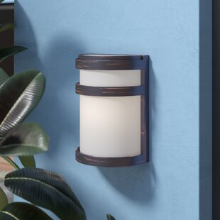 Inexpensive Alyce 1-Light Outdoor Flush Mount By Zipcode Design