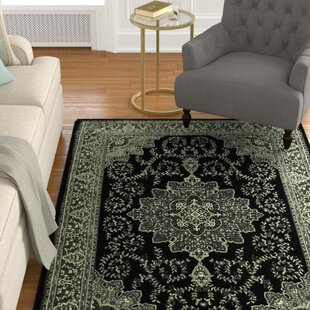 Best Reviews Zoel Black/Gray Area Rug ByDarby Home Co