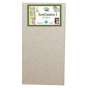 Eco Classica I Cotton Foam Crib Mattress